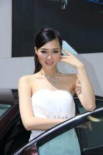上海大众斯柯达2号车模