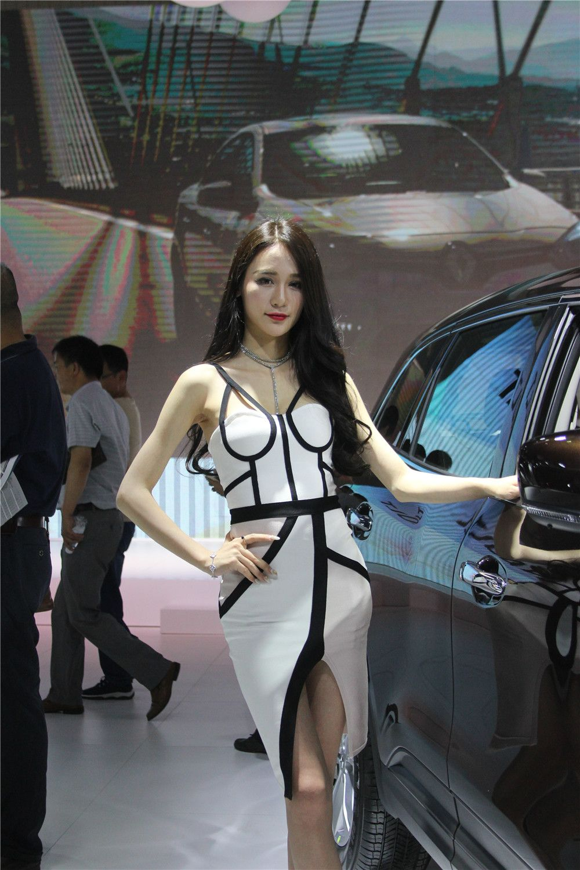2017第十五届华中国际车展车模锦集图片